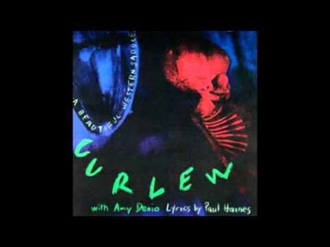 Curlew - Still Trying