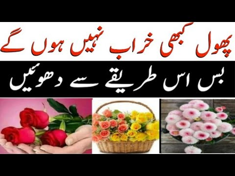 How to Clean Artificial Flowers at Home Just Like New   how to clean dust from silk flowers easily