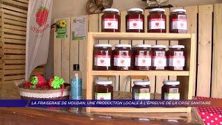 Yvelines | La fraiseraie de Houdan, une production locale à l'épreuve de la crise sanitaire