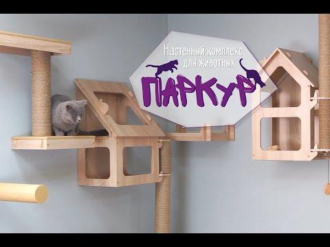 видео: Настенный комплекс для животных
