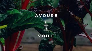 Download Lagu Avoure - Voile mp3