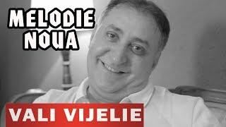 VALI VIJELIE & ELIS ARMEANCA - Pentru ochii aia verzi (NOU 2019)