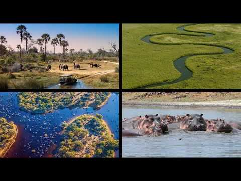 Top Tourist Attractions To See In Zimbabwe