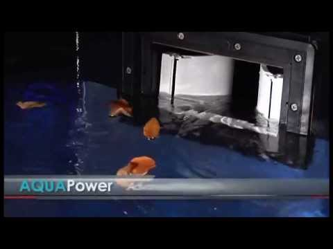 AQUAPower - The Secret to a Sparking-Clean, Energy-Efficient Pool