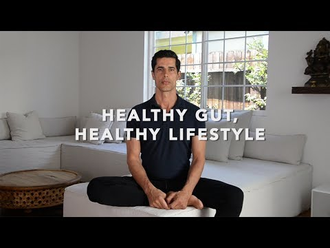 Healthy Gut, Healthy Lifestyle