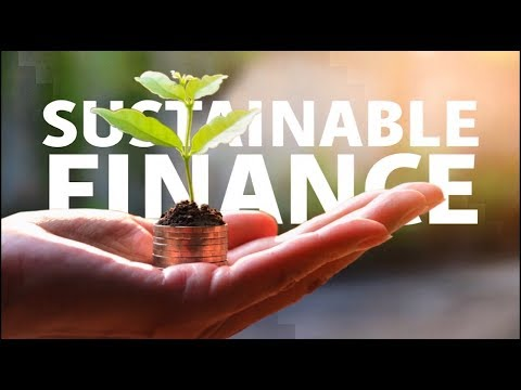 What do you think about sustainable finance?