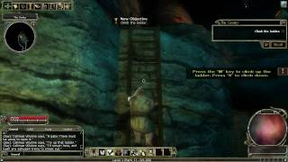 An introduction to Dungeons and Dragons Online