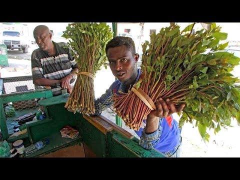 War Deg Deg Xukuumadda Somaliland Oo SHaacisay Cashuuro Xad Dhaaf Oo Qaad Lagu Kordhiyay