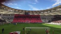 Stuttgart - Hoffenheim