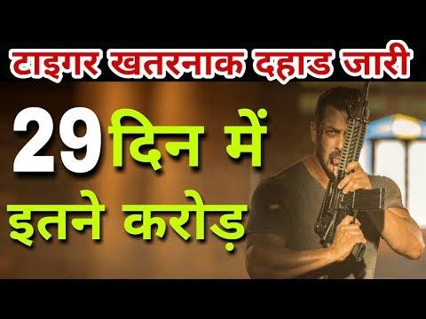 Tiger Zinda Hai 29th Day Box Office Collection | 5th Friday Collection | Salman Khan, Katrina Kaif