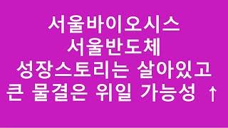 [주식투자]서울바이오시스/서울반도체/성장스토리는 살아있…