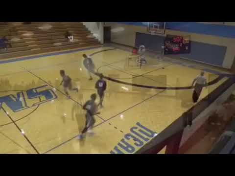 Spartanburg Methodist College #23 Darrion Clinton freshman highlights