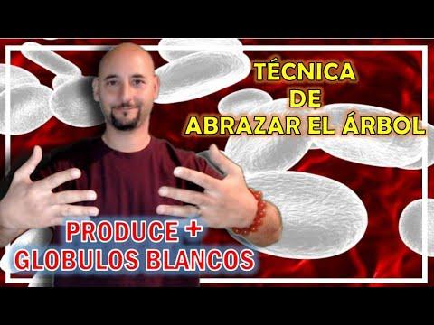 Produce MÁS GLÓBULOS BLANCOS (Defensas) Abrazando el Árbol