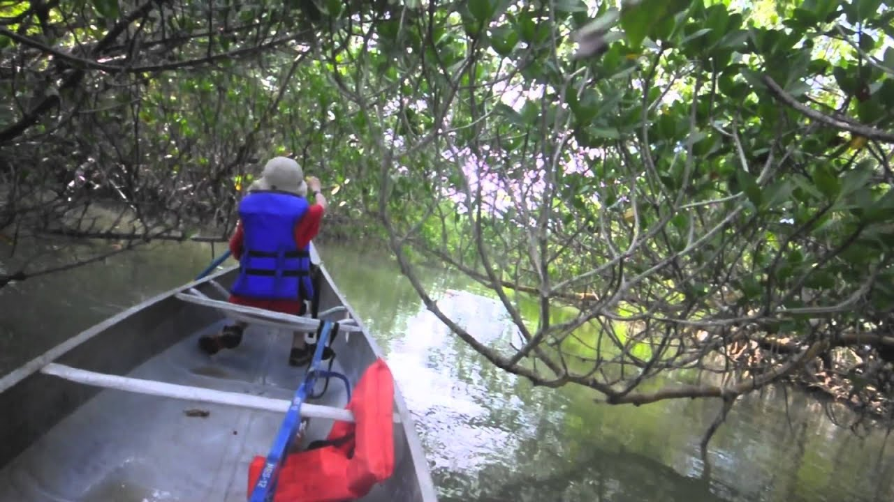 Like No Other Place: Paddling the Everglades | The Big Outside