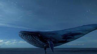 Igrao sam jezivu igru Blue Whale... (Warning) Creepypasta