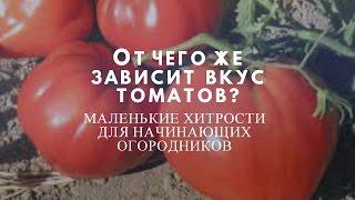 От чего же зависит вкус томатов?