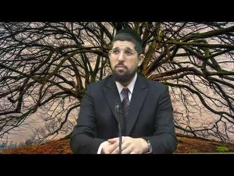 """זרע שמשון לפרשת בא הרב אליהו עמר שליט""""א"""