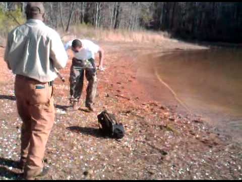 Crappie and hybrid fishing clarks hill youtube for Clarks hill fishing report