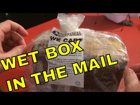 USPS 'WE CARE' Box Soaking Wet. What's Inside?!