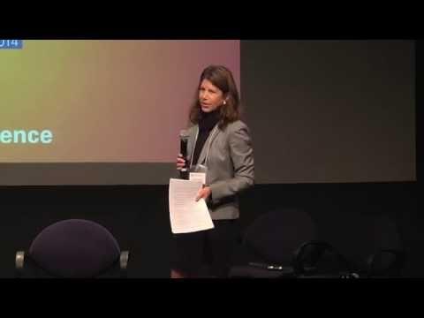 Jennifer Hubbert - The Globalization of Chinese Soft Power