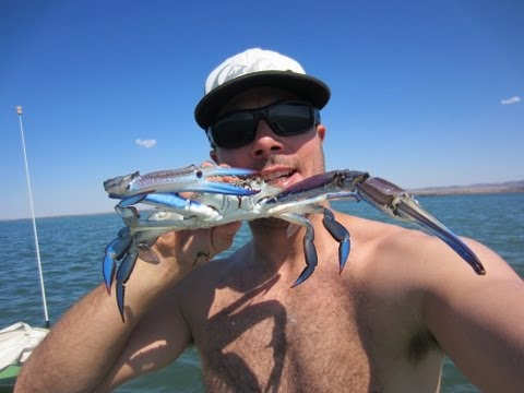 Australian Crabbing- How to Catch a crab and how to cook a crab