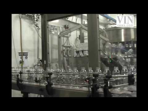 A Behind The Scenes Look At Kedem Grape Juice 1