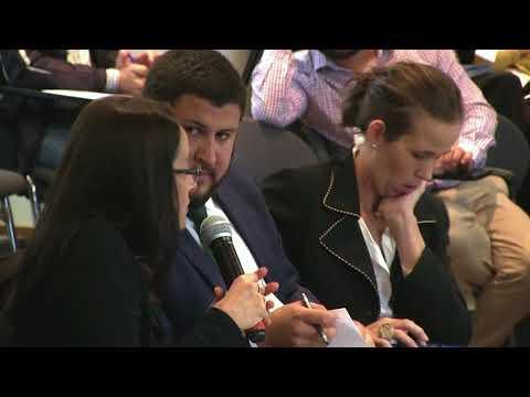 A luta pela democracia na Venezuela e o que o Brasil pode fazer - Debate