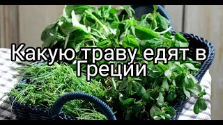 Греция, дикая съедобная трава вместо салата.