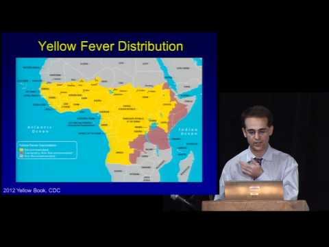 Stanford Physician, Brian Blackburn, MD, Discusses Travel Medicine