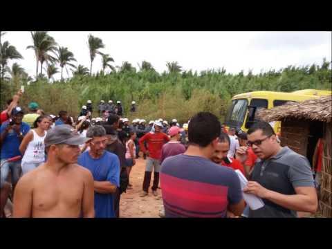Descupação em Paulo Ramos - MA