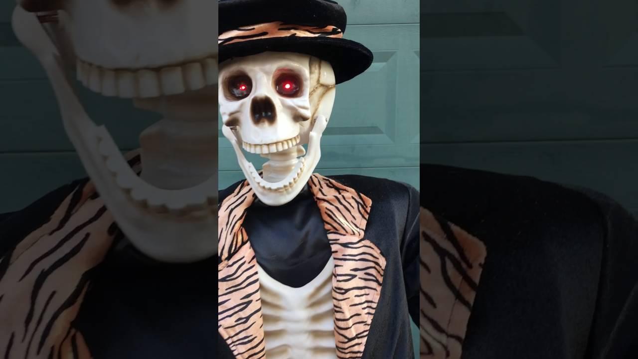 life size skeleton - mardan.armanmarine.co