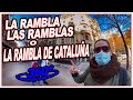 Camino Las Ramblas Residential Development - YouTube