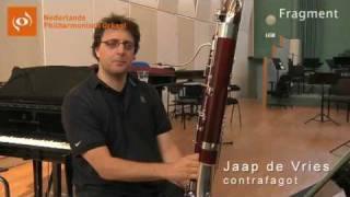 Contrafagottist Jaap de Vries over wat Suite Ma mère l'oye inhoudt - Klassieke muziek