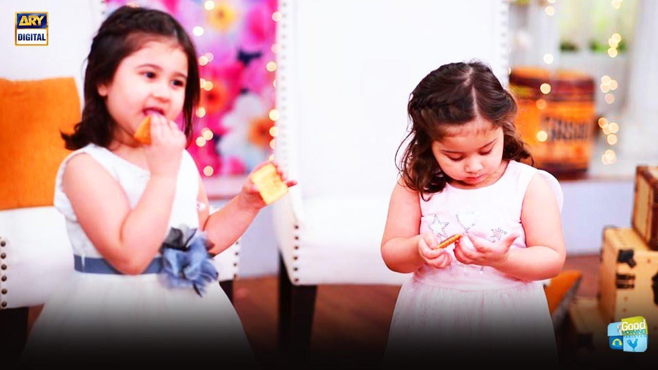 Kya Madiha Rizvi Ki Betiyan Twins Hain - Interesting Story