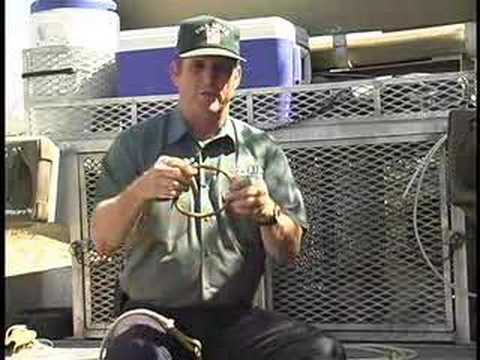 Rick And Ronnie Smith Dog Training