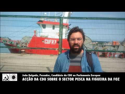 Figueira da Foz - CDU contactou com sector da Pesca