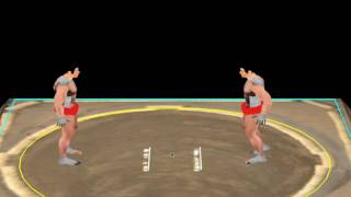 Sumo Video Game #2