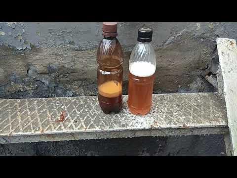 Нефильтрованное разливное пиво