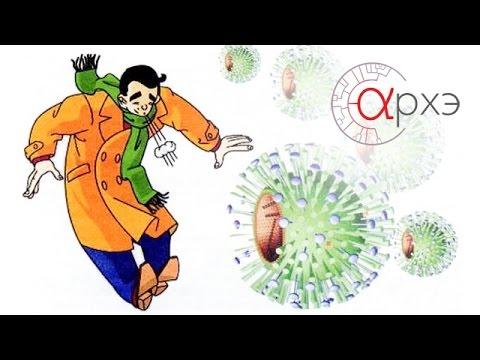 Ответы@: Какой антибиотик пить от гриппа и простуды?