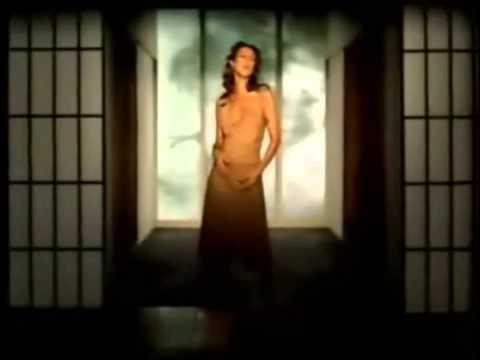 Top 25 Celine Dion Music Videos