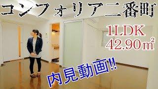 【コンフォリア二番町】内見動画 1LDK 42.90㎡