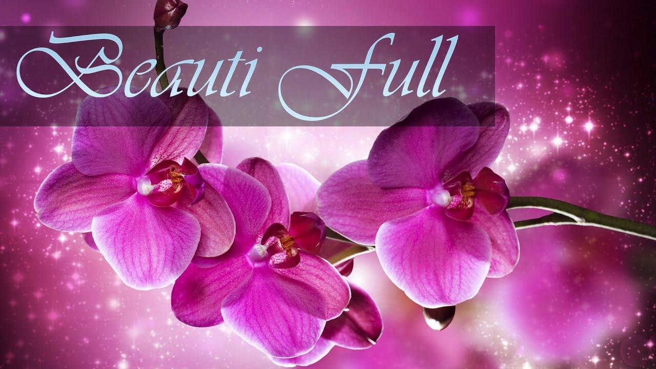 Орхидеи   Обои для рабочего стола - YouTube