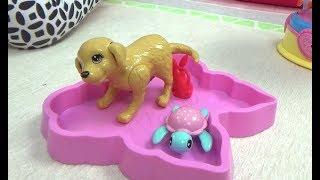 Алиса играет !!! Барби нашла ПОТЕРЯННОГО котенка от в ужасном состоянии
