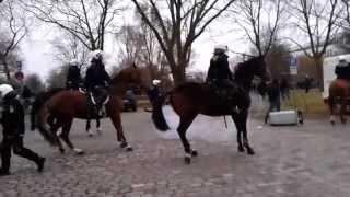 Waldhof Mannheim - KSC // 23.03.2013 // Randale
