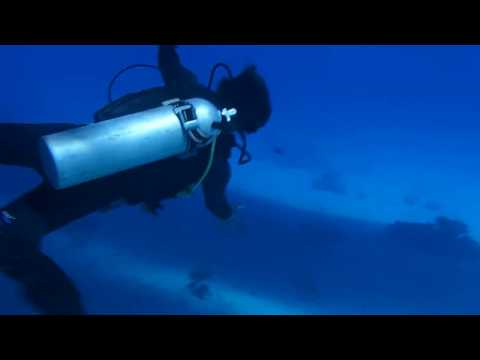 Red sea tank diving