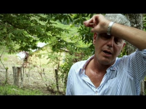 Peru: Anthony Bourdain sees source of rare white cacao beans  (Parts Unknown)