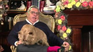 OE#55 - Intervista Pupi D'Angieri part 2 - Bilanci