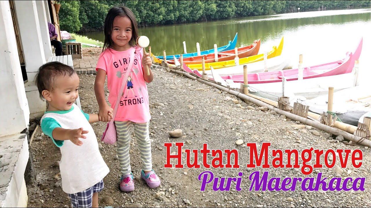Zara Melewati Jembatan Harapan Maerakaca untuk Menyusuri Hutan Mangrove dengan Kapal Dayung ...