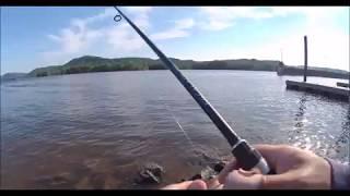 Bass fishing ตกปลาBass ด้วยTop Water