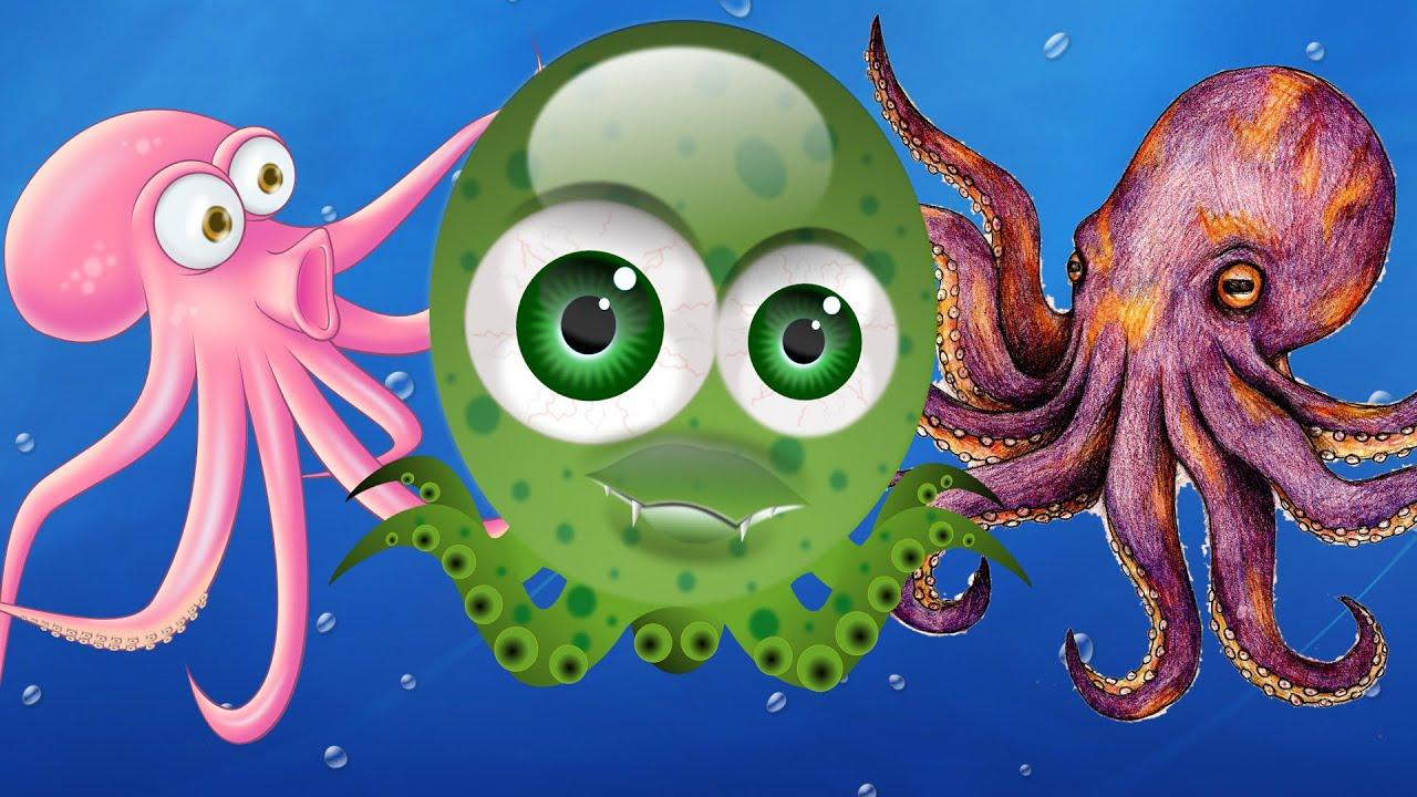 octopus finger family nursery rhymes for children octopus